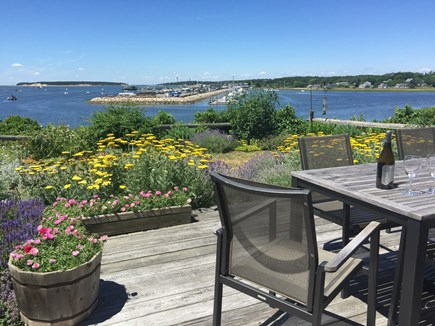 Wellfleet Harbor, on the Bluff Cape Cod vacation rental - Lovely private back yard & deck overlooking Wellfleet Harbor.