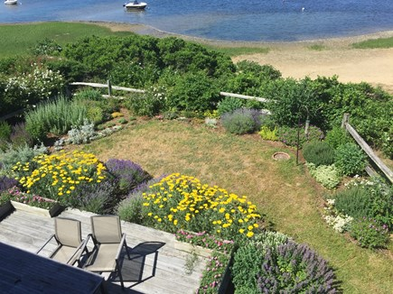 Wellfleet Harbor, on the Bluff Cape Cod vacation rental - Gorgeous garden with many visiting birds - from the top deck