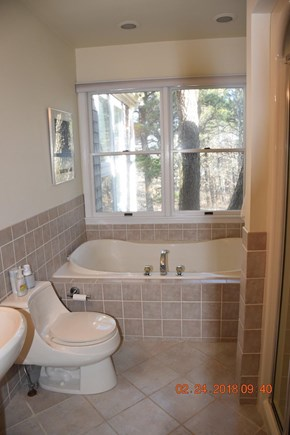 Wellfleet Cape Cod vacation rental - Master Bath with shower stall and jacuzzi.