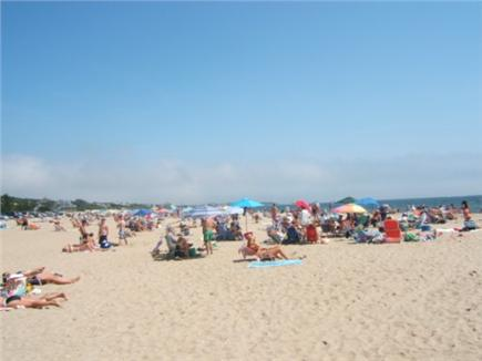 Centerville Centerville vacation rental - Beautiful Craigville Beach is right across the street
