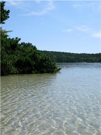 Wellfleet Cape Cod vacation rental - Walk to crystal clear ponds
