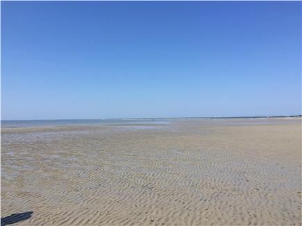 Brewster Cape Cod vacation rental - Low tide transformation to the famous ''Brewster Flats''