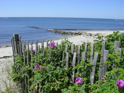 Harwich Port Cape Cod vacation rental - Our beautiful beach!
