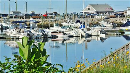 Wellfleet Harbor Cape Cod vacation rental - Boating, kayaking, fishing at your back door...