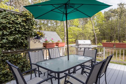 North Eastham Cape Cod vacation rental - Brand new Saber Grill 2017 private seating for 6