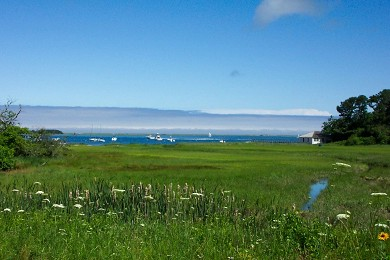 South Orleans Cape Cod vacation rental - View of Salt Marsh & Bay from the Yard