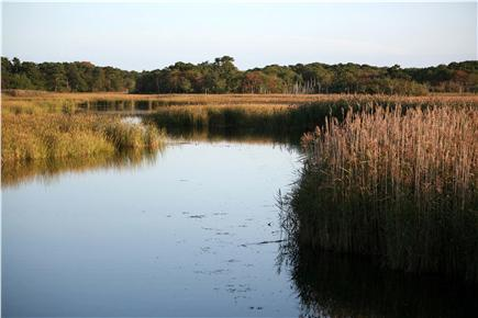 Harwich Cape Cod vacation rental - Hike and kayak the beautiful nearby conservation area.