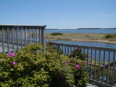 West Yarmouth Cape Cod vacation rental - Yarmouth Vacation Rental ID 7218