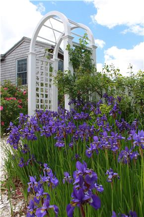 West Yarmouth Cape Cod vacation rental - Arbor on brick walkway to our cottage