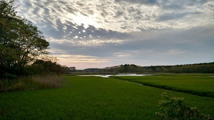 West Harwich Cape Cod vacation rental - Conservation land right near house - 500 acres of beauty