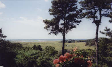 Truro Cape Cod vacation rental - Magnificent views of marshes and Cape Cod Bay
