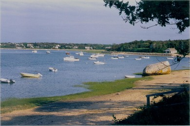 Orleans Cape Cod vacation rental - Take a peaceful walk to Nauset Inlet - looking south