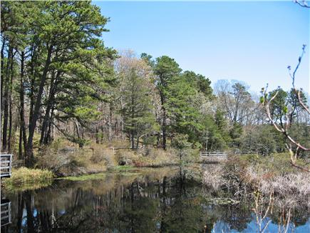 South Wellfleet Cape Cod vacation rental - Nature Pond w/circling Deck (our home is behind center trees)