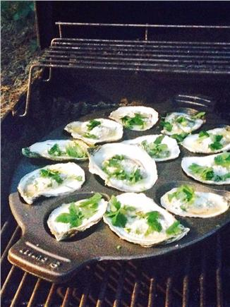 Wellfleet Cape Cod vacation rental - Oysters from Wellfleet Bay