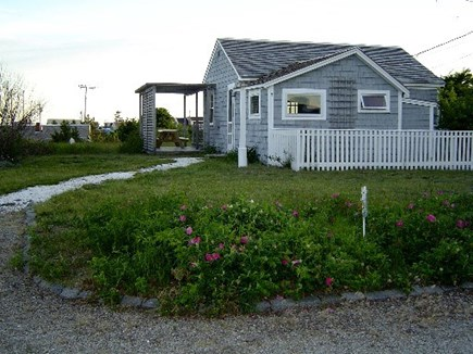 Wellfleet Cape Cod vacation rental - Cottage from driveway - cute !