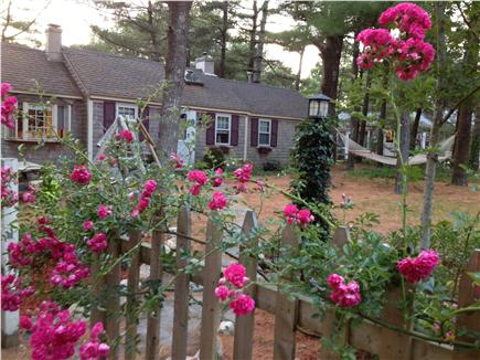 Dennis Port Cape Cod vacation rental - Fenced in front yard