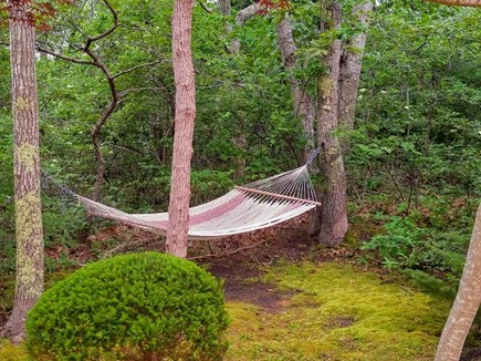 South Chatham Cape Cod vacation rental - Take a Break on the Hammock!