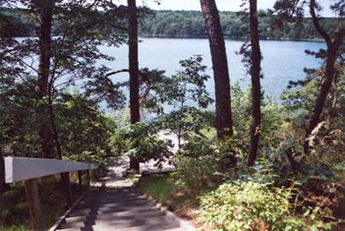 South Truro - Wellfleet line Cape Cod vacation rental - Stair down to pond level deck & beach below house