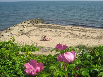 Dennis Port, Sea St Beach Area Cape Cod vacation rental - Sea St. beach our closest beach along with Raycroft Rd Beach too!