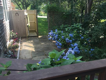 Near Harwich center/park/bike  Cape Cod vacation rental - Outdoor Shower and private landscaped patio