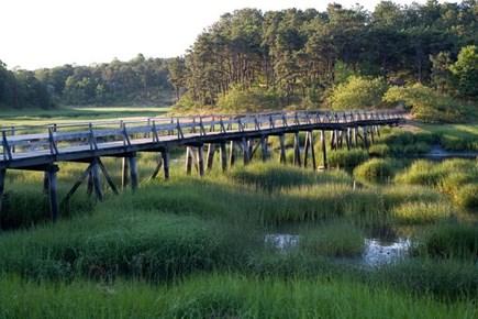 Wellfleet Village Cape Cod vacation rental - Uncle Tim's Bridge: walks along the shore