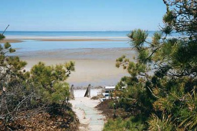 Brewster Cape Cod vacation rental - Pathway To Our Private Beach
