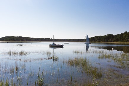 Wellfleet Cape Cod vacation rental - Walk to the Beach!
