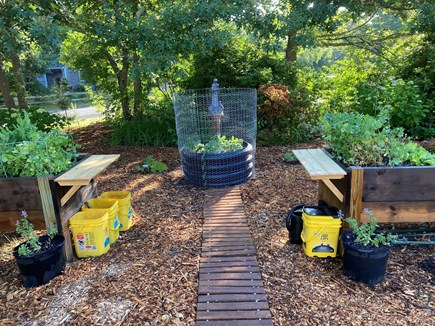 Brewster, The Highlands Cape Cod vacation rental - Raised beds