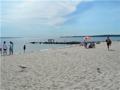 Falmouth Cape Cod vacation rental - Surf Drive Beach with snack bar/facilities