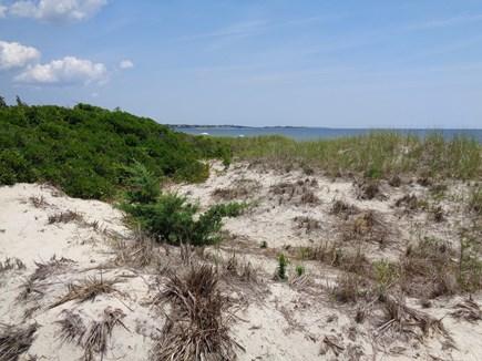 Centerville West Hyannisport Cape Cod vacation rental - Craigville Beach, Conservation area, off Long Beach Rd.