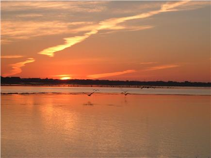 Provincetown Cape Cod vacation rental - View of sunrise from the house