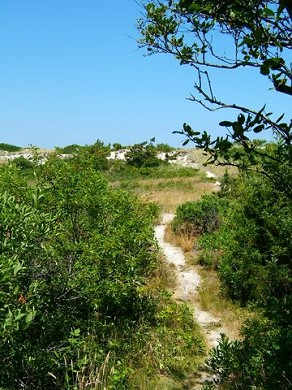 East Sandwich Cape Cod vacation rental - Take a beautiful stroll down a path to beach