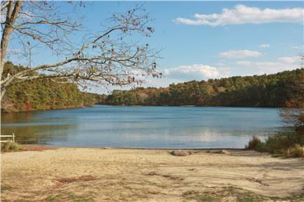 Wellfleet Cape Cod vacation rental - Long Pond. Beautiful, clean, fresh water pond a 10 minute walk.