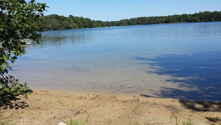 Dennis, Scargo Lake Cape Cod vacation rental - Swimming area with sandy bottom and gradual depth. Great fishing!