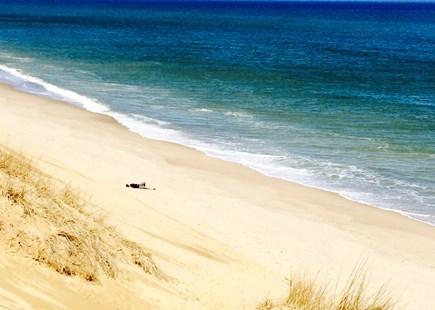 Wellfleet Cape Cod vacation rental - Getting away from the crowds....Wellfleet beach this spring