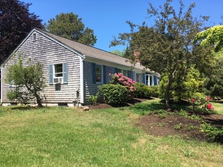 Orleans Cape Cod vacation rental - Great yard for your pet