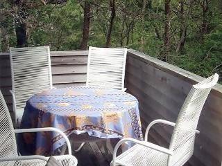 Truro Cape Cod vacation rental - Outside deck