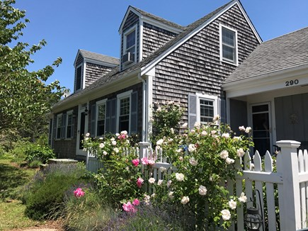 Eastham Cape Cod vacation rental - Welcome to my home!  May you have the best vacation ever!
