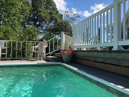 Eastham Cape Cod vacation rental - A private, heated, secluded pool! A float, a book, a drink—aah!!