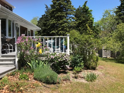 Eastham Cape Cod vacation rental - A hint of the backyard and 12 ft deep wraparound deck