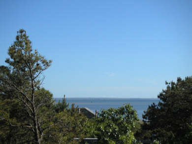 Wellfleet, Indian Neck Cape Cod vacation rental - View of Bay from deck