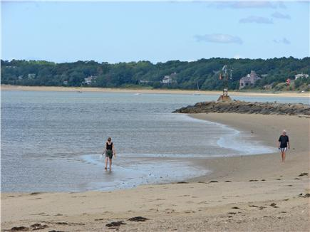 Wellfleet Cape Cod vacation rental - Wellfleet center offers many beaches to explore