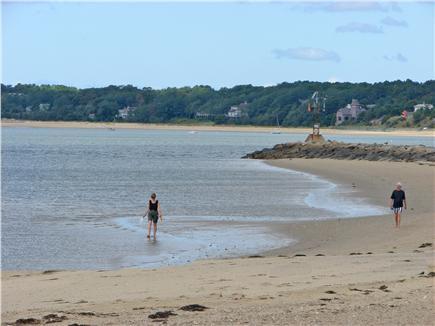 Wellfleet Cape Cod vacation rental - Wellfleet center offers many beaches to explore