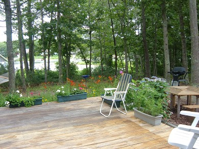 East Falmouth Cape Cod vacation rental - Short walk to private sandy beach.