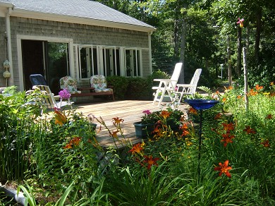 East Falmouth Cape Cod vacation rental - Enjoy the perenial flower gardens,many birds,and butterflies.