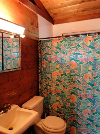 Wellfleet Cape Cod vacation rental - First floor full bathroom