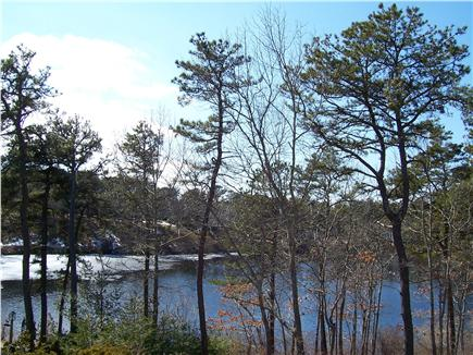 South Yarmouth Cape Cod vacation rental - Enjoy wonderful Views of Lily Pond