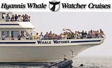 /images/advert/1098_3_hyannis-whale-watchers-barnstable.jpg