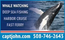 Captain John Whale Watch