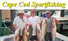 /images/advert/2033_3_cape-cod-sportfishing-hyannis.jpg